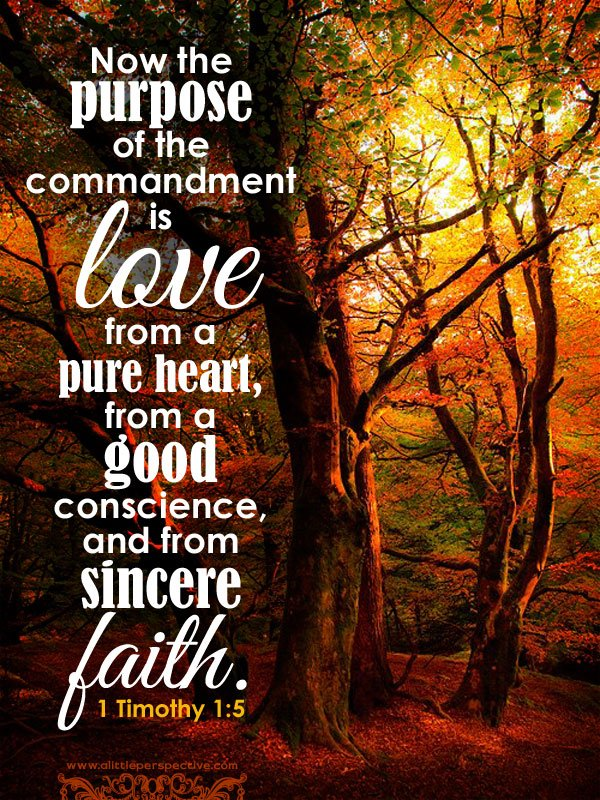 thoughts for may 22nd love that issues from a pure heart bible