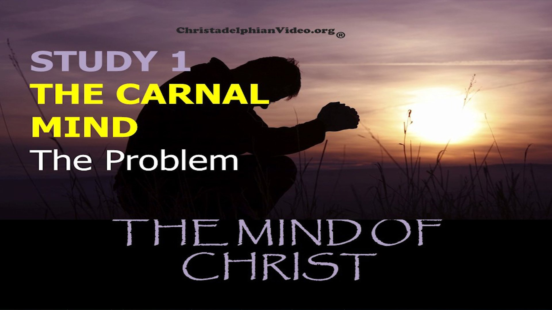 The Mind Of Christ: 4 Pt Video Study: