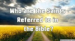 Who Are the Saints referred to in the Bible?