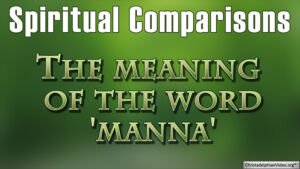 Spiritual Comparisons: The meaning of the word `manna' (Deut 8:3)