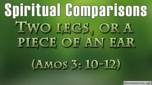 Spiritual Comparisons: Two legs, or a piece of an ear (Amos:3:10-12