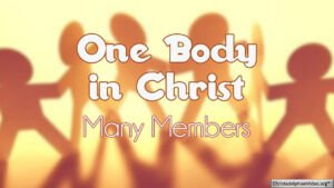 One Body in Christ Series Pt 1 'MANY MEMBERS'