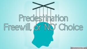 Predestination Freewill, or 'NO' Choice