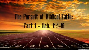 The Pursuit of Biblical Faith: 2 Part Video Study