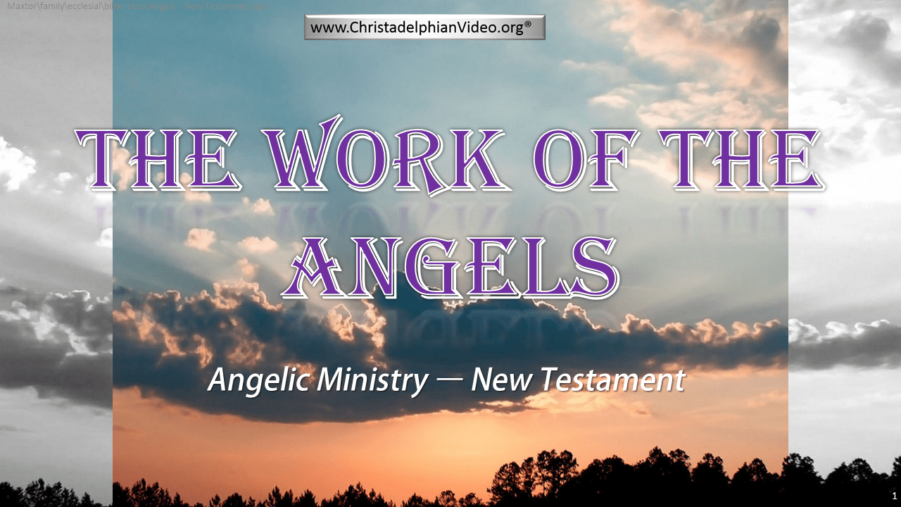 The Work Of The Angels Study Series (Rugby) Video Bible Study Series