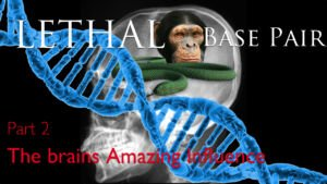 WOW! Genetic Code Base Pair Proves lethal to humanity Part 2Video Post