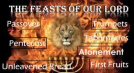 The Feasts of Our LORD - Will 2017 be the year they find fulfilment? Video post