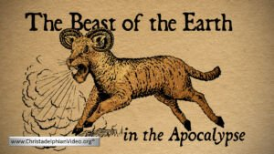The 'Beast of the Earth' in the Apocalypse Rev 13:11- 18