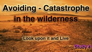 4: Look upon it and live Avoiding - Catastrophe in the wilderness