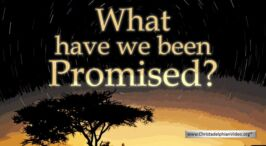 What have we been Promised? - Video Post
