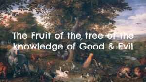 The Fruit of the Tree of the Knowledge of Good and Evil 6 part series New Video Release
