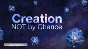 Creation: NOT by Chance Video post