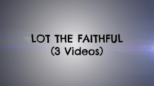 Lot the faithful: 3 Video Series