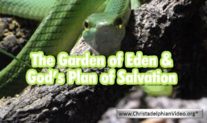 The Garden Of Eden and God's Plan of Salvation - Video post