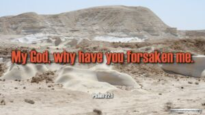 """Thought for January 10th. """"MY GOD, WHY HAVE YOU FORSAKEN ME"""""""