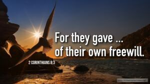 "Thought for March 7th. ""OF THEIR OWN FREEWILL"""