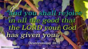 "Thought for May 9th. ""YOU SHALL REJOICE IN ALL THE GOOD … """