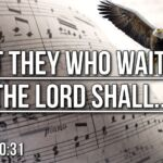 "Thought for June 16th. ""BUT THEY WHO WAIT FOR THE LORD SHALL …"""