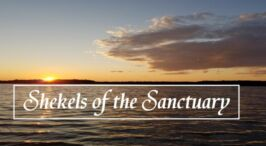 Shekels of the Sanctuary - Pause to Consider Video Podcasts