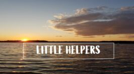 Pause to consider - Little Helpers Podcast