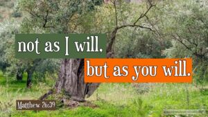 """Thought for July 25th. """"NOT AS I WILL BUT AS YOU WILL"""""""