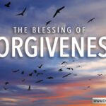 The Blessing of Forgiveness – 6 Videos