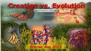 Creation vs all versions of Evolution