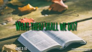 """Thought for September 11th. """"WHAT THEN SHALL WE DO?"""""""
