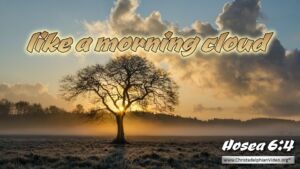 "Thought for November 9th. ""… LIKE A MORNING CLOUD"""