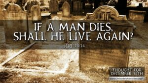 """Thought for December 12th. """"IF A MAN DIES, SHALL HE LIVE AGAIN"""""""