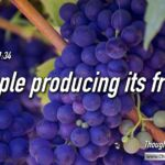 "Thought for January 19th. ""PEOPLE PRODUCING IT'S …"""