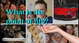 What is the point of Life?