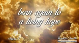 """Daily Readings & Thought for June 11th. """"BORN AGAIN TO A LIVING HOPE"""""""