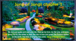 'Song of Solomon' ch2