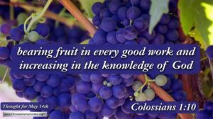 """Daily Readings & Thought for May 14th. """"INCREASING IN THE KNOWLEDGE OF GOD"""""""