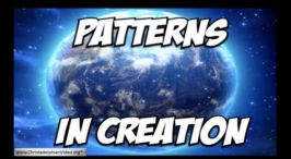 Focus on Genesis. 2 Videos (Talks for 14-18yr olds)