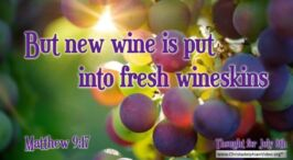 Daily Readings & Thought for July 8th. 'FRESH WINESKINS'