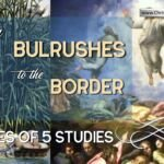 From Bulrushes to the Border – 5 Videos
