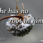 "Daily Readings & Thought for July 12th. ""HE HAS NO ROOT IN HIMSELF"""