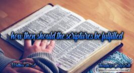 """Daily Readings & Thought for July 25th. """"... HOW THEN SHOULD THE SCRIPTURES BE FULFILLED"""""""